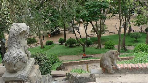 camboya-alojamientos.jpg