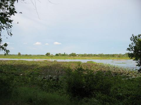 camboya-naturaleza.jpg